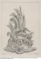 Plate C16 from the Livre de légumes inventées et dessinées par J. Me.r …], [1734-1742