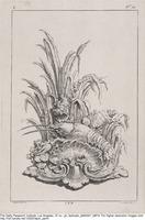 Plate C14 from the Livre de légumes inventées et dessinées par J. Me.r...], [1734-1742