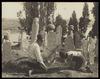 Cimetière turc, Eyoub, [Neg. no.] 781, 1890-1899