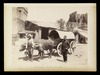 Chariot turc, Neg. no. 108, undated