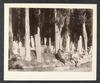 Cimetière turc à Eyoub, Neg. no. 228, 1870s-1880s
