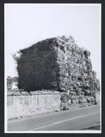 Lazio--Roma--Albano Laziale--Tempio a Torre, 1960-1990