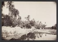 Rivière à Bou-Saäda, [187]